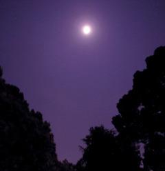 月光のアンフラマンス
